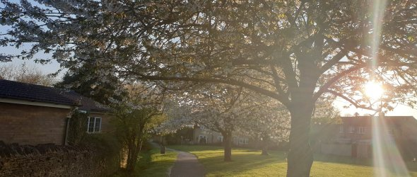 Churchcroft in Spring